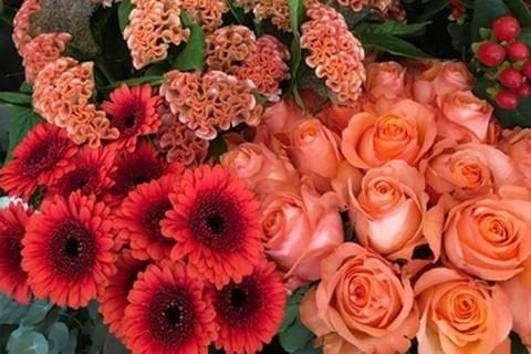 Blumen_Lebenslust